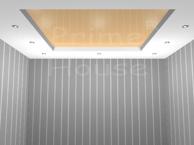 Форма 5 (вставка натяжного потолка, глянцевый)